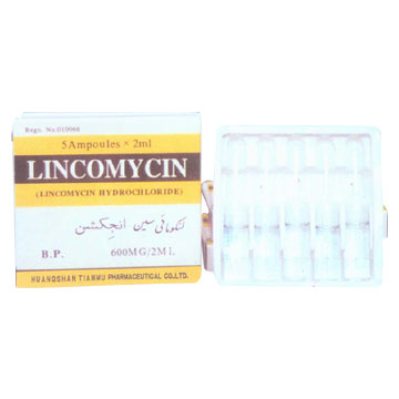 Lincocin Injection Dose