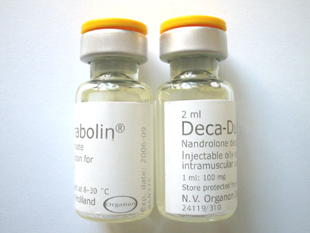 nandrolone decanoate life