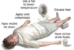 Heat Syncope Signs and Symptoms